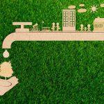 artículo sobre ecología